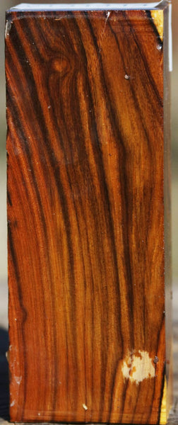 Desert Ironwood Turning Blank