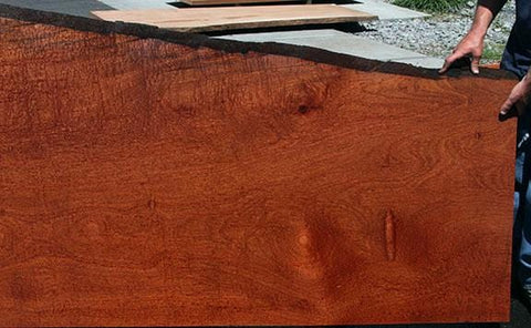 Port Orford Cedar Turning Square