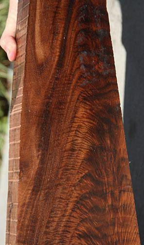 Exhibition Feather Crotch Claro Walnut Rifle Blank