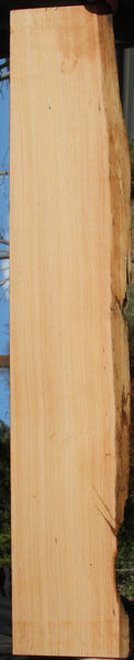 Live Edge Sinker Douglas Fir Long Lumber