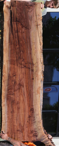 Rustic Figured California Walnut Slab