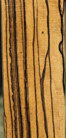 Black and White Ebony Fingerboard