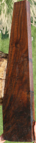 AAA Figured Claro Walnut Rifle Stock