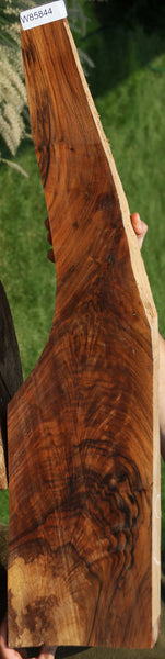 Exhibition Grade English Walnut Feather Crotch Rifle Stock