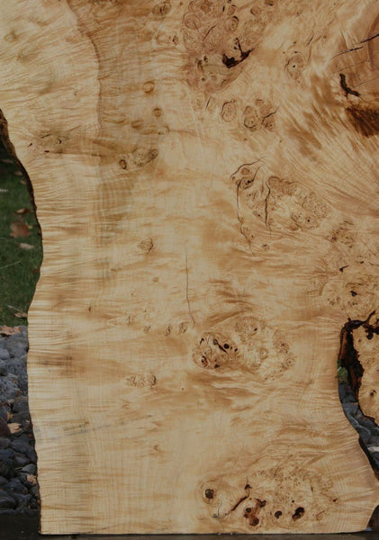 Rustic Flamed Silver Maple Slab