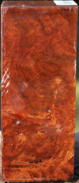 XF Asian Iron Burl Peppermill