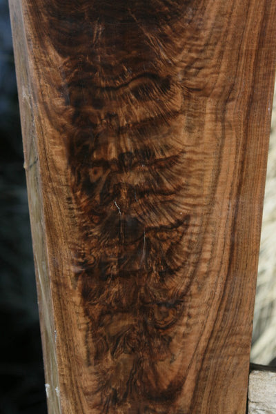 Exhibition Grade Feather Crotchwood Claro Walnut Gun Blank