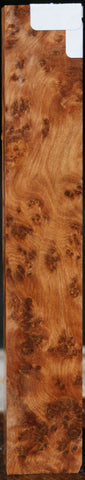 "Exhibition Thuya Burl Turning Square (5"" x 1"" x 1"")"