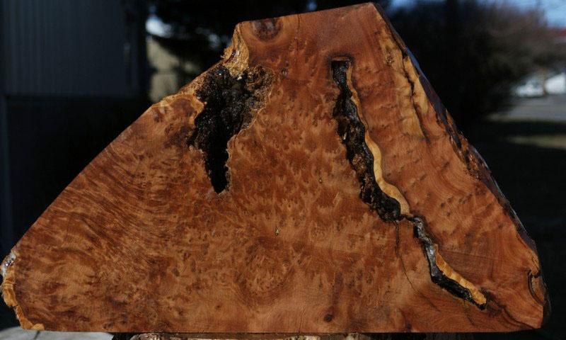 Thuya Burl Mini Slab