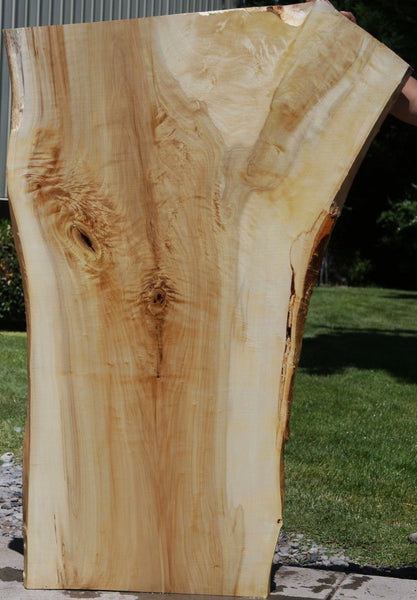 Tulip Poplar Crotch Figure Slab