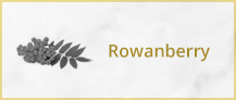 files/rowanberry.png