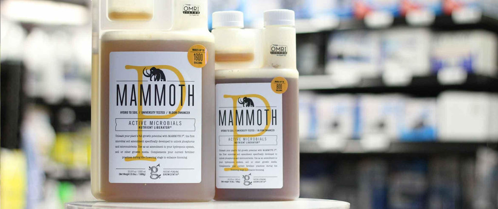 Are the Dark Bottles of Mammoth P Good to Use?