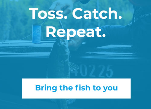 Toss, Catch, Repeat, bring the fish to you.