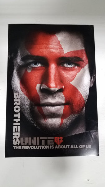 "The Hunger Games Part 2 Brothers Unite 13"" x 20"" Movie Poster"