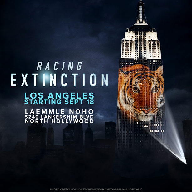 """Racing Extinction"" the Movie and what WE can do!"