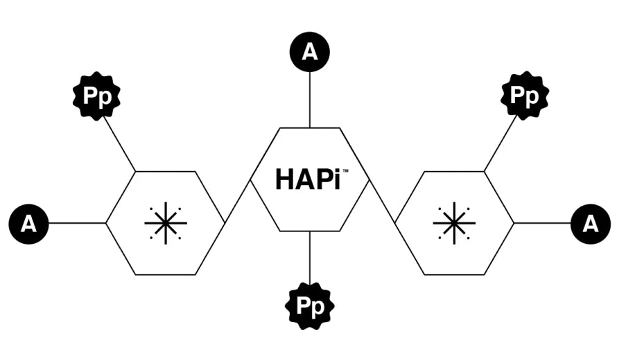 Haircare science elements diagram