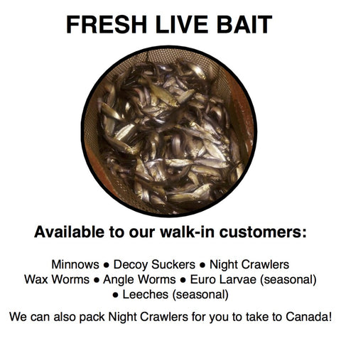Blue Ribbon Bait and Tackle shop Oakdale Minnesota Live Bait Minnows Leeches Crawlers Maggots Waxworms
