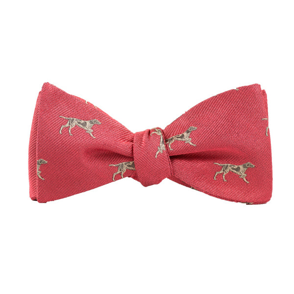 Pointer - Woven Bow Tie