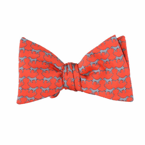 Retriever - Print Bow Tie
