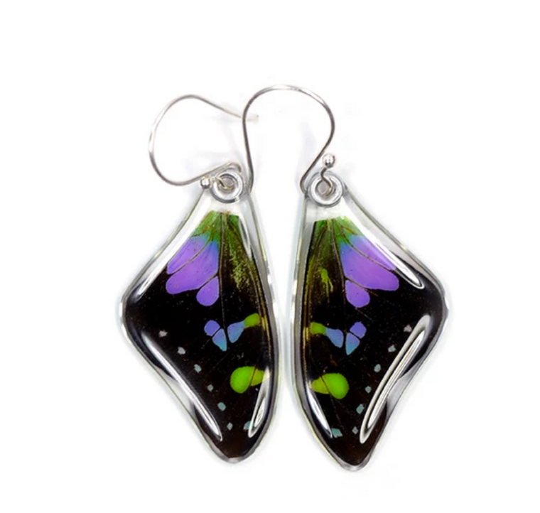 Butterfly Wing Earrings- Purple Spotted Swallowtail