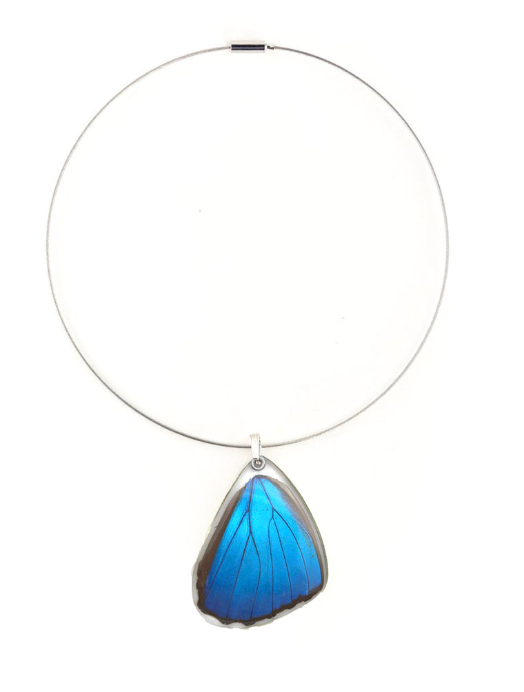 Butterfly Wing Necklace- Blue Morpho