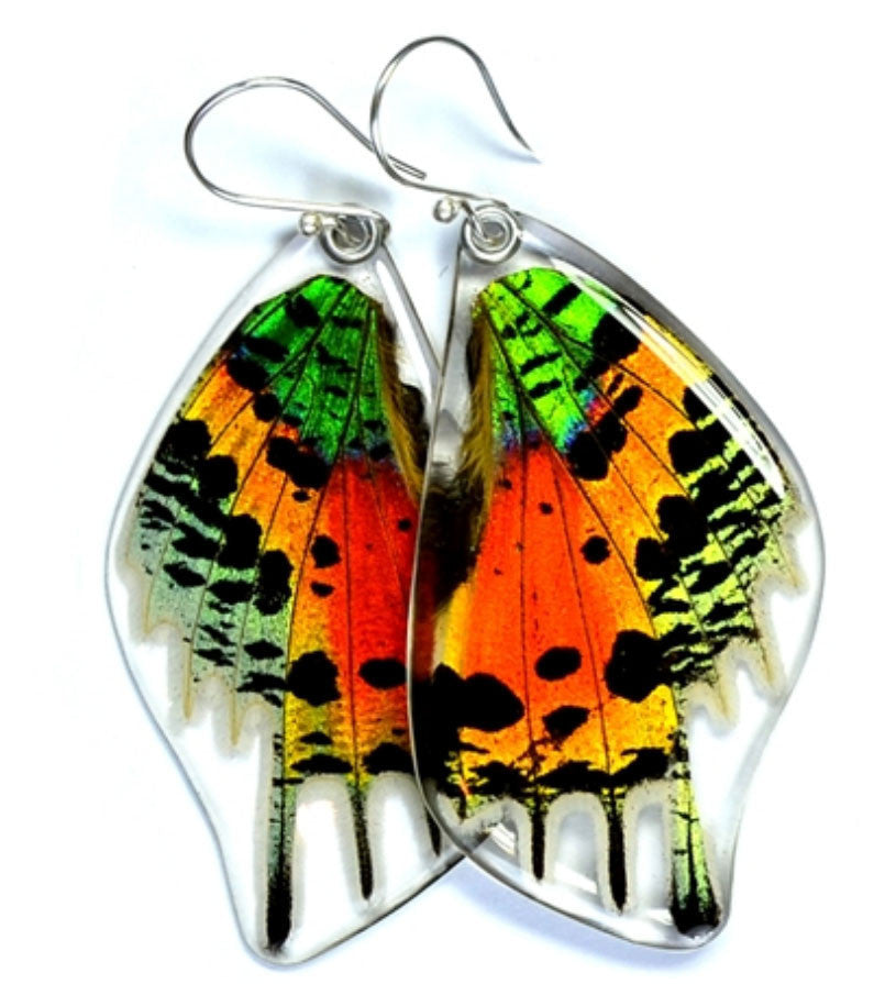 Butterfly Wing Earrings- Sunset Moth Bottom Wing - Wanderlust + Wildhearts