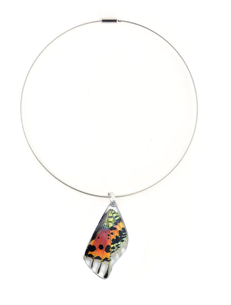 Butterfly Wing Necklace- Sunset Moth