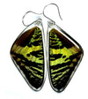 Butterfly Wing Earrings- Sunset Moth Top Wing