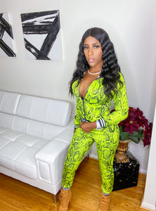 The Royalty neon green snake skin print track suit