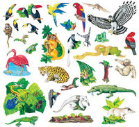 Rain Forest Animals