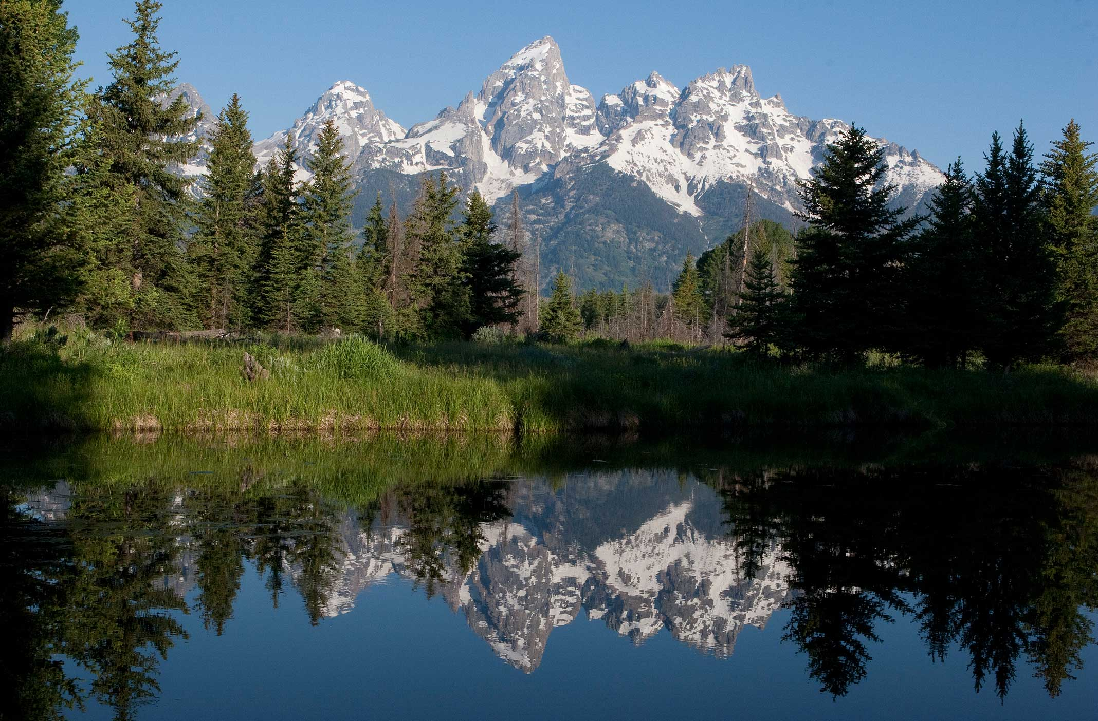 Pristine lake near Jackson Hole, Wyoming with pine trees and mountains reflected