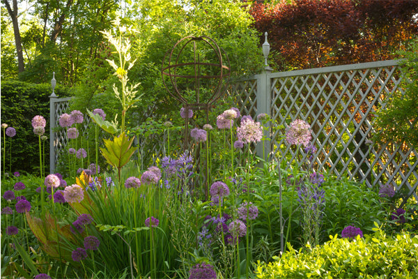 Wildflower garden in front of a latticed fence