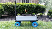 Multi-Purpose Cart - Silver on Blue  ON SALE NOW!