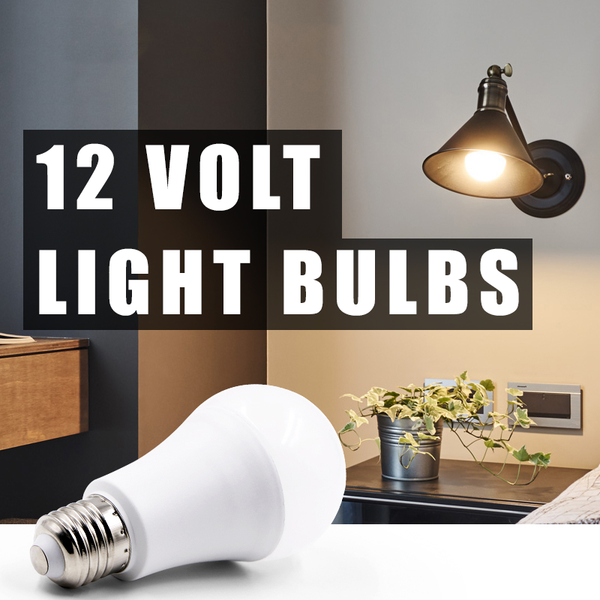 12 Volt Light Bulbs