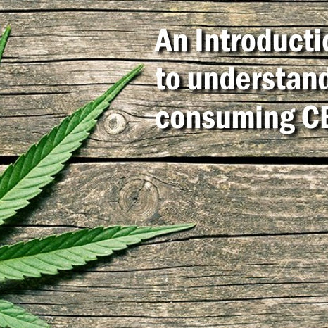 An introduction to understanding and consuming CBD