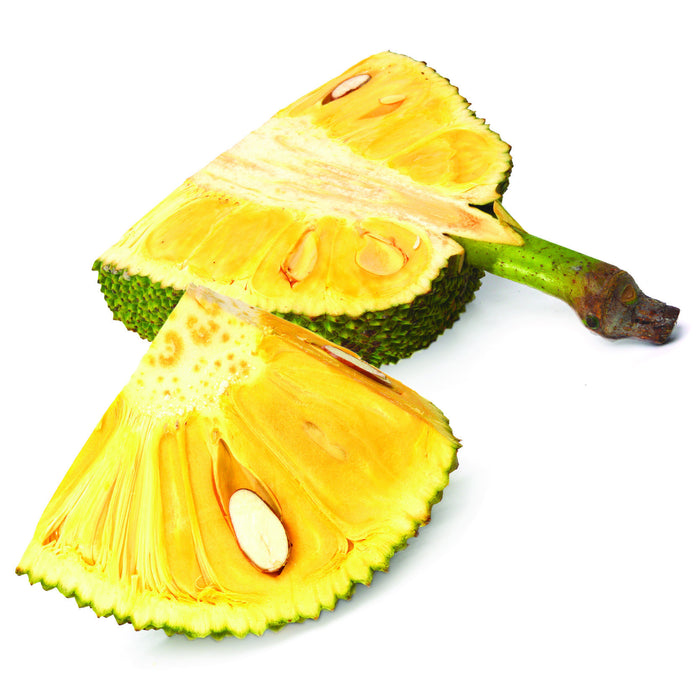 Jackfruit ( 100ml )