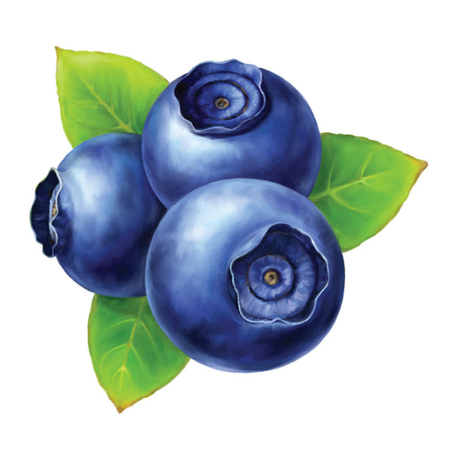 Blueberry Wild ( e liquid | 100ml )