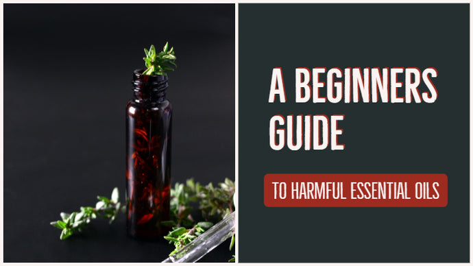 Beginners Guide to Harmful Essential Oils