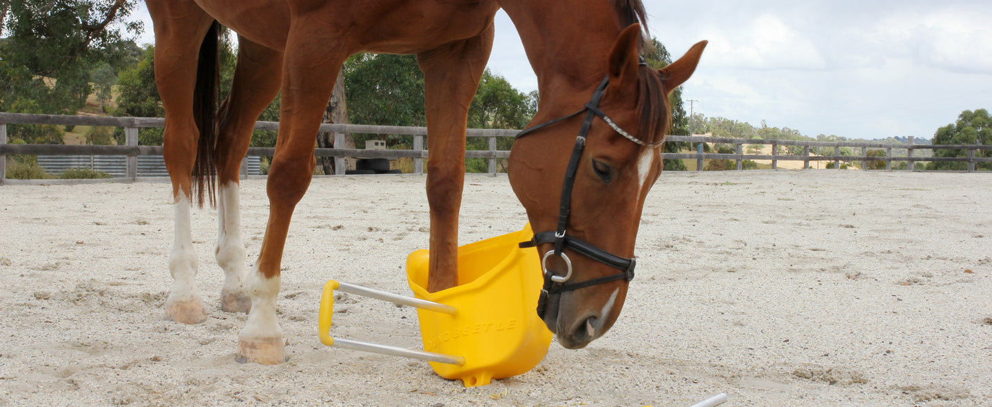 Horse Safety Poo Scoop