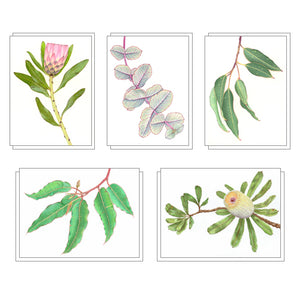 """Wild Flora"" - set of 5 note cards"