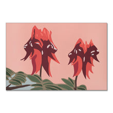 "Load image into Gallery viewer, ""Sturt Desert Pea"" - fine art giclee canvas print"