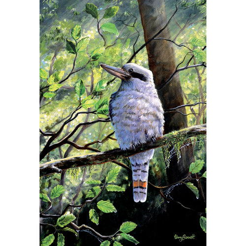 EB06 Forest Friend (Australian Kookaburra)