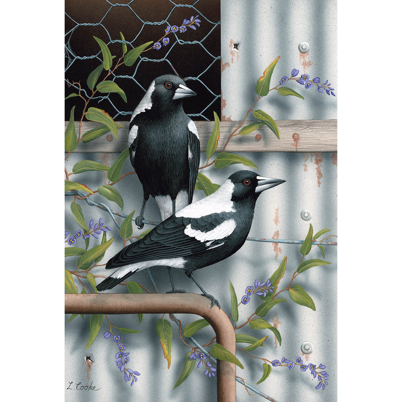 LC01 Australian Magpies, Purple Hardenbergia