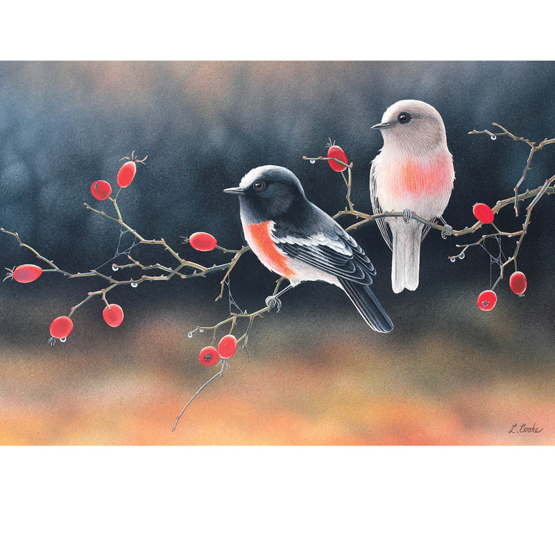 LC20 First Light, Autumn Morning (Australian Scarlet Robins)