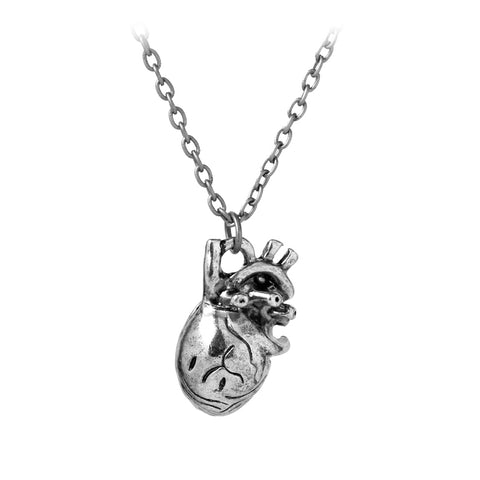 trendy anatomical human heart locket photo pendant necklace