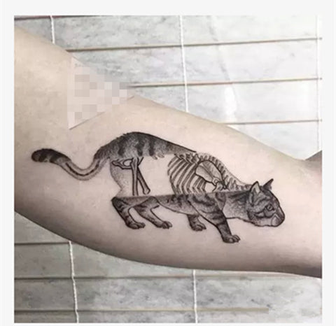 x ray cat unique design waterproof temporary tattoo sticker