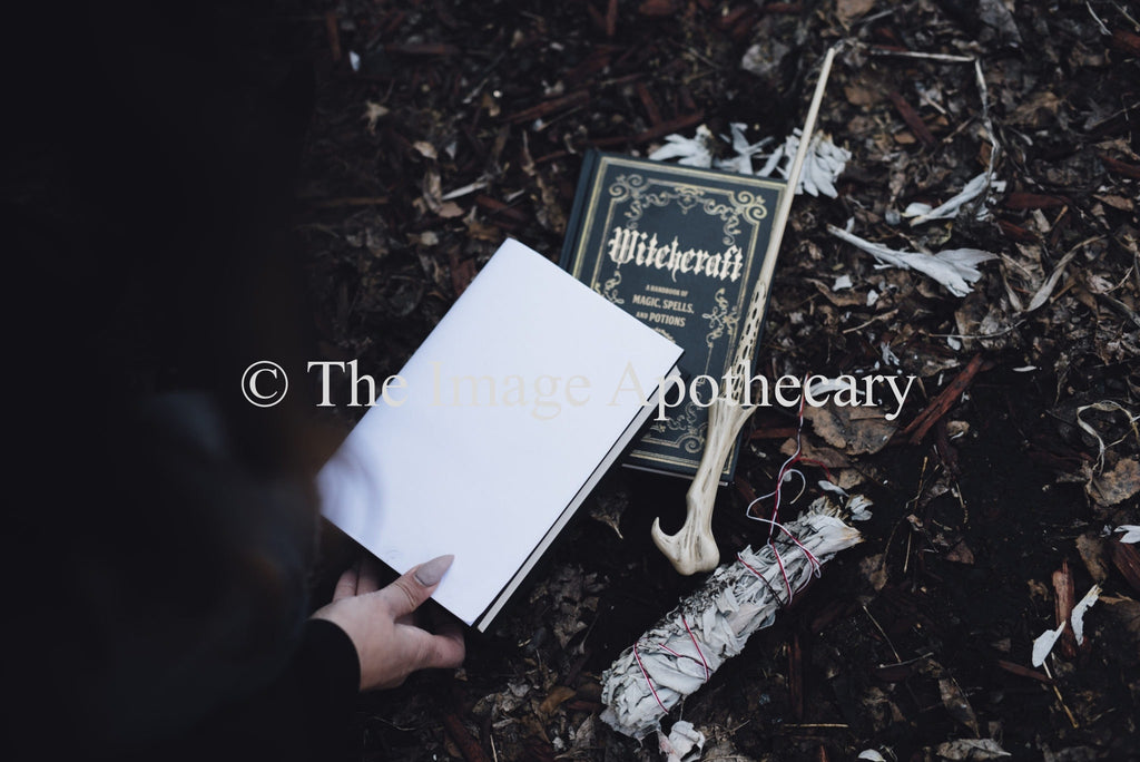 The Image Apothecary_3756M - Stock Photography by The Image Apothecary