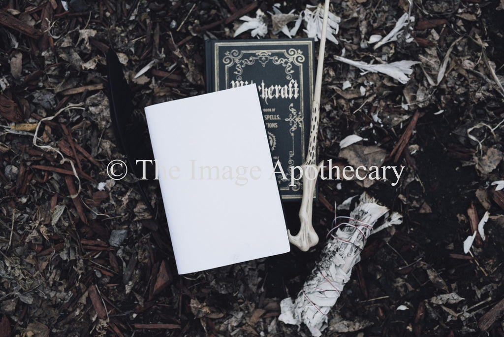 The Image Apothecary_3760M - Stock Photography by The Image Apothecary