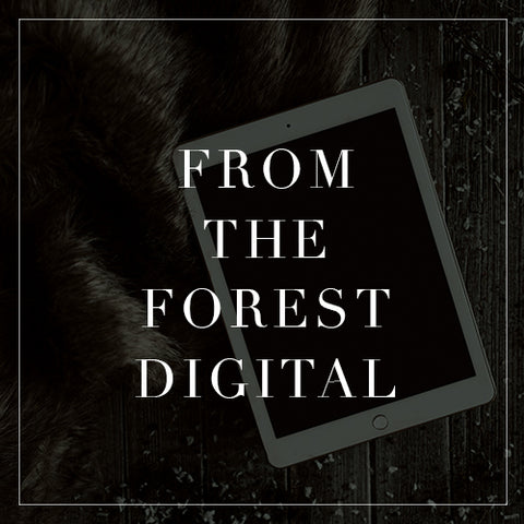 Entire From the Forest Digital Collection