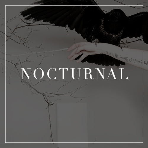 Entire Nocturnal Collection
